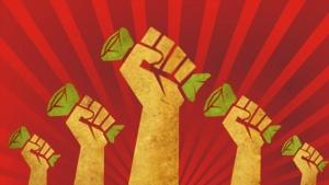 financiamento-coletivo-para-salvar-a-economia-vinicius-carneiro